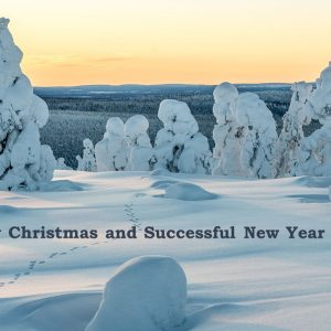 Merry Christmas from Finnica Consulting